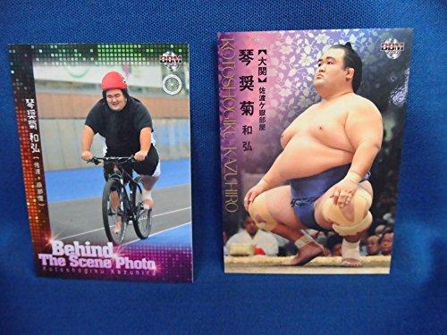 大相撲カード  琴奨菊 2枚セット