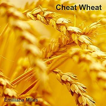 Cheat Wheat