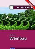 Weinbau - Karl Bauer