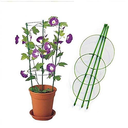 MuSheng(TM) 1 Set of Support pour Plantes Bague Réglable Garden Treillis Cage Support pour Plantes avec 3 Anneaux pour Plantes Grimpantes en Pot Vegtables Flowers, 45 cm (Vert)