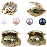 4PCS Saltwater Akoya Cultured Pearl Oyster with Round Pearl (6.5-7.5mm) Inside Jewelry Making or Birthday Gifts (4 Colors)