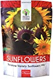 Bulk Sunflower Seeds - Variety Mix 10 Types of Beautiful Sunflowers - 1/4 Pound Bag Open Pollinated Sunflower Seeds for Planting