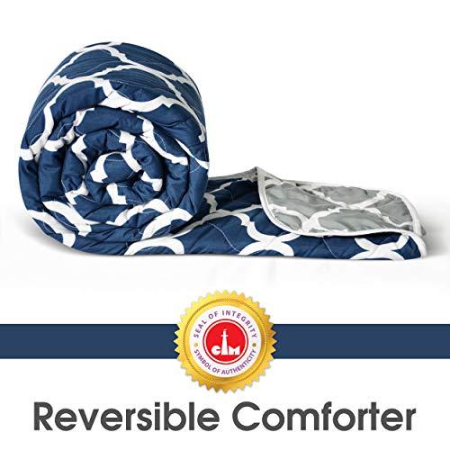 Divine Casa Microfibre Comforter/Blanket/Quilt/Duvet Lightweight, All Weather, Reversible Single...