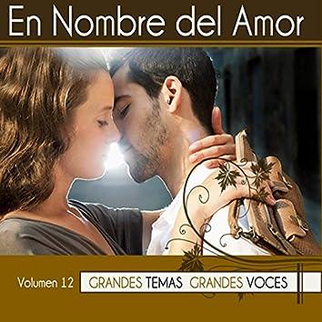 En Nombre del Amor Vol. 12