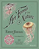 Ernst Haeckel Art Forms In Nature: 22 Pull-Out Posters