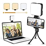 EZCO Video Conference Lighting Kit, USB Portable Zoom Light Clip On Camera Laptop Monitor with 3 Dimmable Color & Brightness for Remote Working/Zoom Call/Online Meeting/Live Broadcasting (with Stand)
