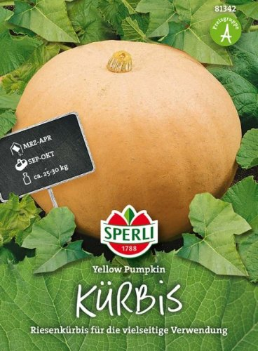 Sperli Kürbis Yellow Pumpkin