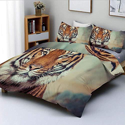 Juego de funda nórdica, felino grande en un estado tranquilo con fondo borroso Cerrar imagen de un juego de cama BeastDecorative de 3 piezas con 2 fundas de almohada, naranja multicolor, el mejor rega