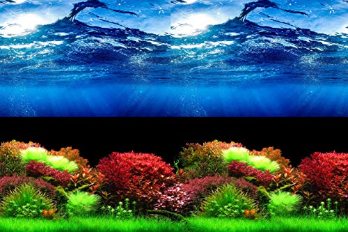 HITOP Double Sides Aquarium Background Picture,3 Different pcs with Total 6 Options for Fish Tank (15.5H31.5L(inch))