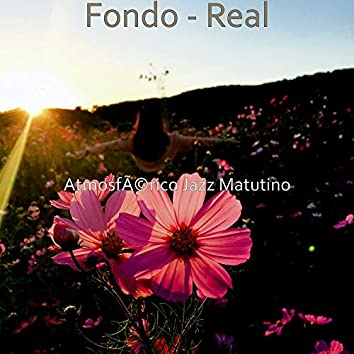 Fondo - Real