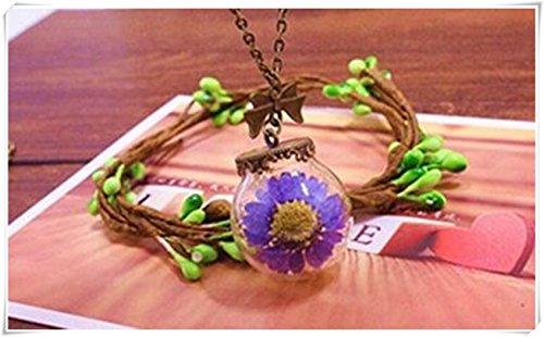 Kleine Orb Terrarium Hang, Echte Bellis Perennis Droge Bloem Ketting, Maak Een Wens Gift Met 30mm Geblazen Glas Orb/Bruine Wax Touw Ketting
