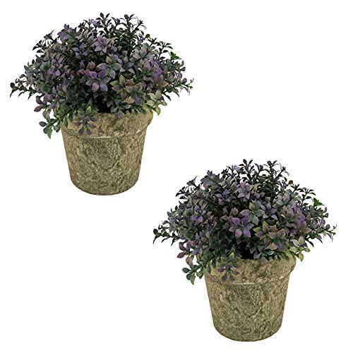 PLANTI - Lote de dos plantas pequeñas artificiales con maceta, altura +/- 18 cm x diámetro +/- 15 cm