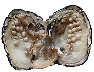 Cultured Pearls in Oysters,Cultured Freshwater Pearl Oysters with Pearls Inside Big Oyster Pearls in Oyster Anniversary Decoration for Women(5-7mm)(1 PC)