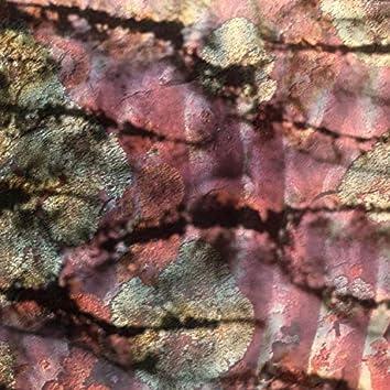 Brittler Skin / Growing Bone