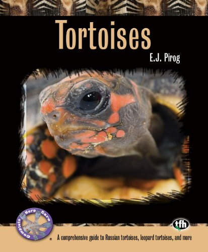 Tortoises (Complete Herp Care) (English Edition)