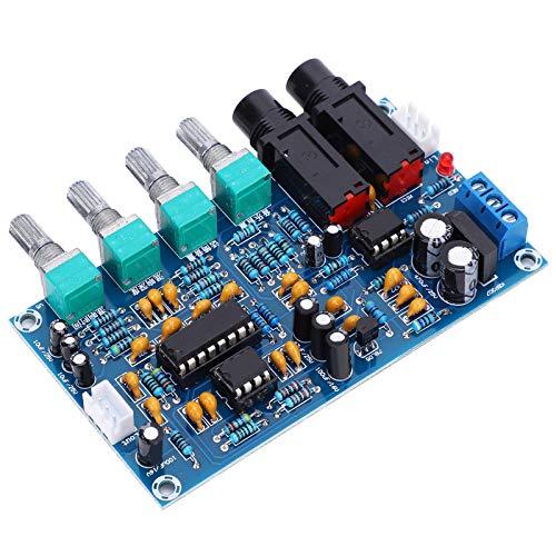 LANTRO JS - XH-M173 Placa de Amplificador de Audio Digital Placa de Amplificador de Potencia de Audio Digital de 12V Placa de Amplificador de micrófono