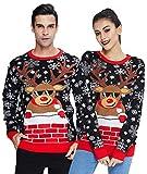 Cooler Rudolph Weihnachtspullover Paar