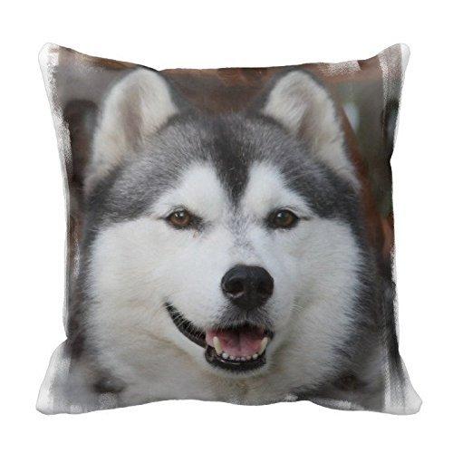 hx-lds Husky Hund in Kamera Überwurf Kissen Bezug Home Kissen Fall dekorative Animal Muster für Sofa 45,7x 45,7cm Zwei Seiten