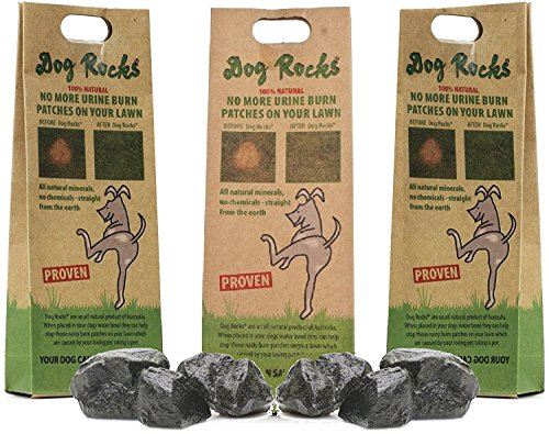 Dog Rocks - Prevent Grass Burn Spots by Urine 200g - Save Your Lawn from Yellow Marks - 3 Pack