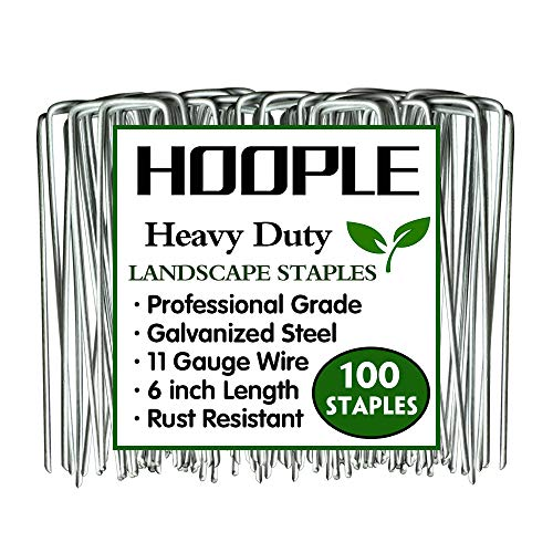 6'' 11 Gauge 100 Pack Heavy Duty U-Shaped Securing Stakes Pins Spikes - Sod Fence Staples for Anchoring Weed Barrier and Landscape Fabric, Netting, Irrigation Hoses, Ground Mat, More Applications