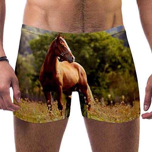 LORVIES Welsh Pony Hardlopen Bruin Paard Galloping Mannen Zwem Boxer Briefs Korte Vierkante Been Badpak Snelle Droge Zwemkleding, S