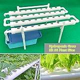 Kit de cultivo hidropónico 36 ubicaciones de plantas 4 tubos Conjunto de vegetales vegetales de 1 capa