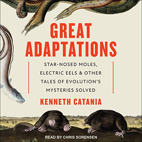 Great Adaptations cover art