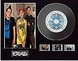 Blink 182 - Pantalla de CD con efecto de vinilo (disco negro, enema of the State...