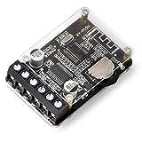 RUIZHI Placa amplificadora de audio Bluetooth 5.0 10W 15W 20W 2.0 Mini módulo de amplificador inalámbrico estéreo de doble canal con carcasa protectora