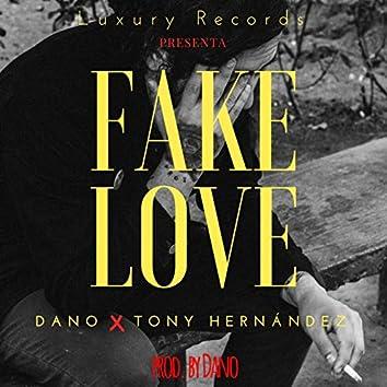Fake Love (with Dano)