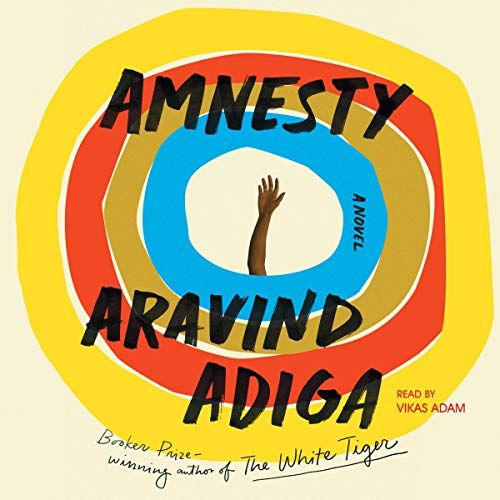Amnesty audiobook cover art