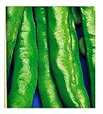 Semi - 1 Kg - Fava Aguadulce a Lunghissimo Baccello Spadaverde - Vicia Faba - Semi agricoli - Fave Idea regalo originale - Ottima qualità
