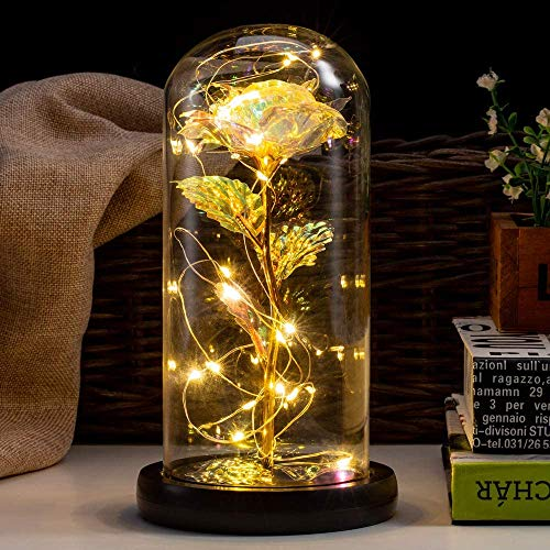 HelaCueil Die Schöne und das Biest Rose Ewige Rose im Glas - with LED Light and Gift Box Muttertagsgeschenk (funkelnd/Goldene Blätter)