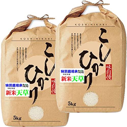新米入荷 令和3年産 新米 熊本産 特別栽培米 コシヒカリ 10kg (5kg×2) 天草 地区指定 (5分つき 約 9.5kg(4.75kg×2袋))