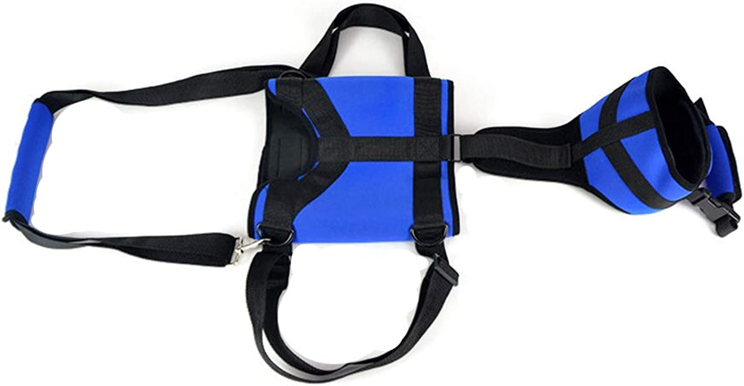 Cacoffay MultiFunctional FullBody Pet Lifting Dog Harness Vest, Adjustable Designed for FrontOnly, RearOnly or Dog Lifting Rehabilitation Harness Mobility Problems Due to Arthritis,S