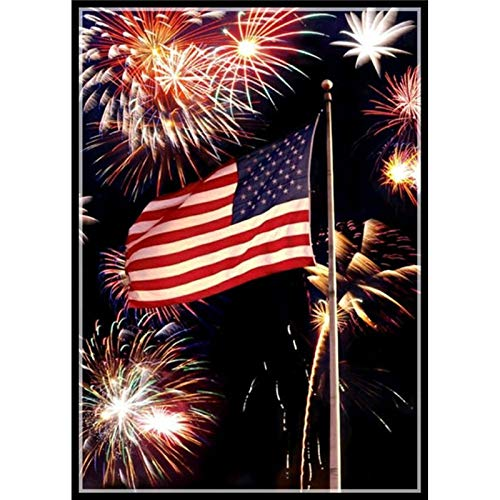 DIY 5D Diamond Painting Full Round Drill Embroidery Cross Stitch Arts Craft Canvas Wall Decor Fireworks and Flag 11.8x15.7 in by SexTown