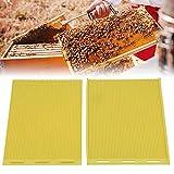 Hoja de cera de abejas, hoja de base de cera de abejas Prensa de cera de abejas Prensa de cera de abejas en relieve para apicultura