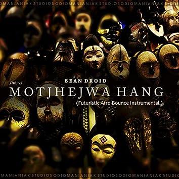 Motjhejwa Hang (Futuristic Afro Bounce Instrumental)