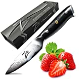 Zelite Infinity Paring Knife 4 Inch - Alpha-Royal Series - Japanese...