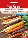 Dürr Samen 4135 Möhre Harlequin Mix F1 (Möhrensamen)