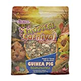 F.M. Brown's Tropical Carnival Gourmet Guinea Pig Food with Alfalfa and Timothy Hay Pellets -...