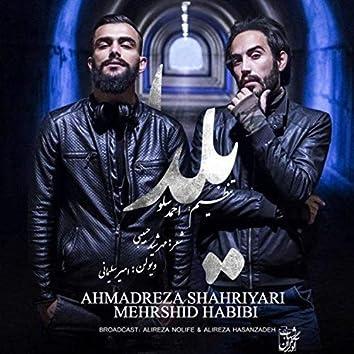 Yalda (feat. Mehrshid Habibi)