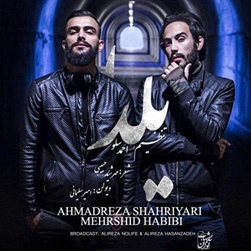 Ahmad Solo feat. Mehrshid Habibi