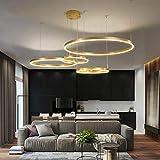 WEM Novedad Lámpara de techo, candelabro LED con marco dorado para sala de estar, dormitorio, comedor, accesorios de acrílico, iluminación de techo, 40 60 80 100Cm, 40 60 80Cm 3R, blanco cálido sin c