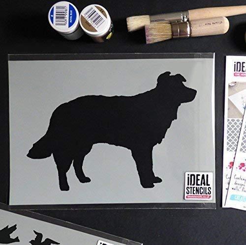 Ideal Stencils Collie Hund Schaf Hund Schablone | Farbe Dekor auf Wände Stoff & Möbel | Wiederverwendbar Kunst Handwerk - halb geschliffen Durchsichtig Schablone, XS/11X16CM