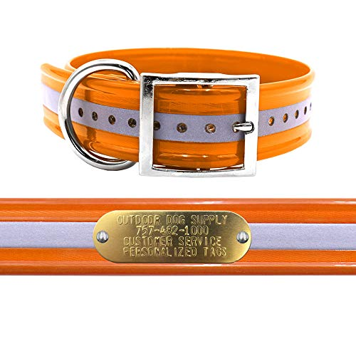 """1 1/2"""" Wide D Ring Reflective Hunting Dog Collar with Free Brass Name Plate (Reflective Orange)"""