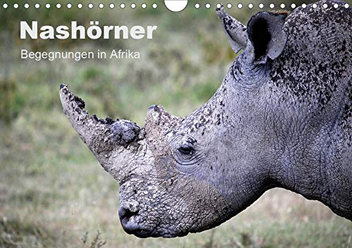 Nashörner - Begegnungen in Afrika (Wandkalender 2020 DIN A4 quer): Breit- und Spitzmaulnashörner in Afrika (Monatskalender, 14 Seiten ) (CALVENDO Tiere)