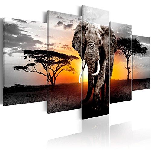 murando Cuadro en Lienzo Africa Elefante 200x100 cm Impresión de 5 Piezas Material Tejido no Tejido Impresión Artística Imagen Gráfica Decoracion de Pared Paisaje Naturaleza g-C-0054-b-o