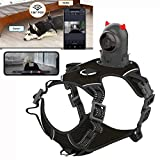 Dog Harness with Camera from Dog Perspective, Harness and Leash Set, Adjustable Vest for Medium and Large Dogs,XS