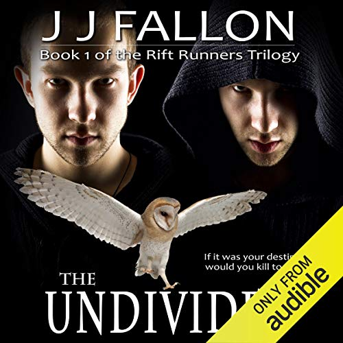 Couverture de The Undivided